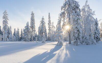 Rozpoczęły się ferie zimowe dla uczniów