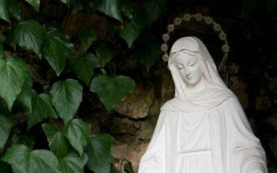 Dziś święto Nawiedzenia Najświętszej Maryi Panny